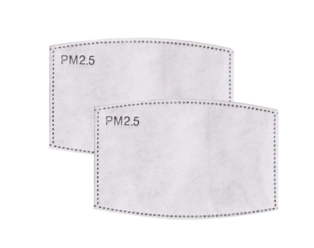 PM 2.5 REPLACEMENT MASK FILTERS (2 COUNT)