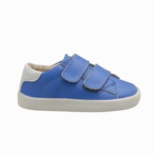 Toddy Blue