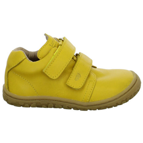 Noah Yellow
