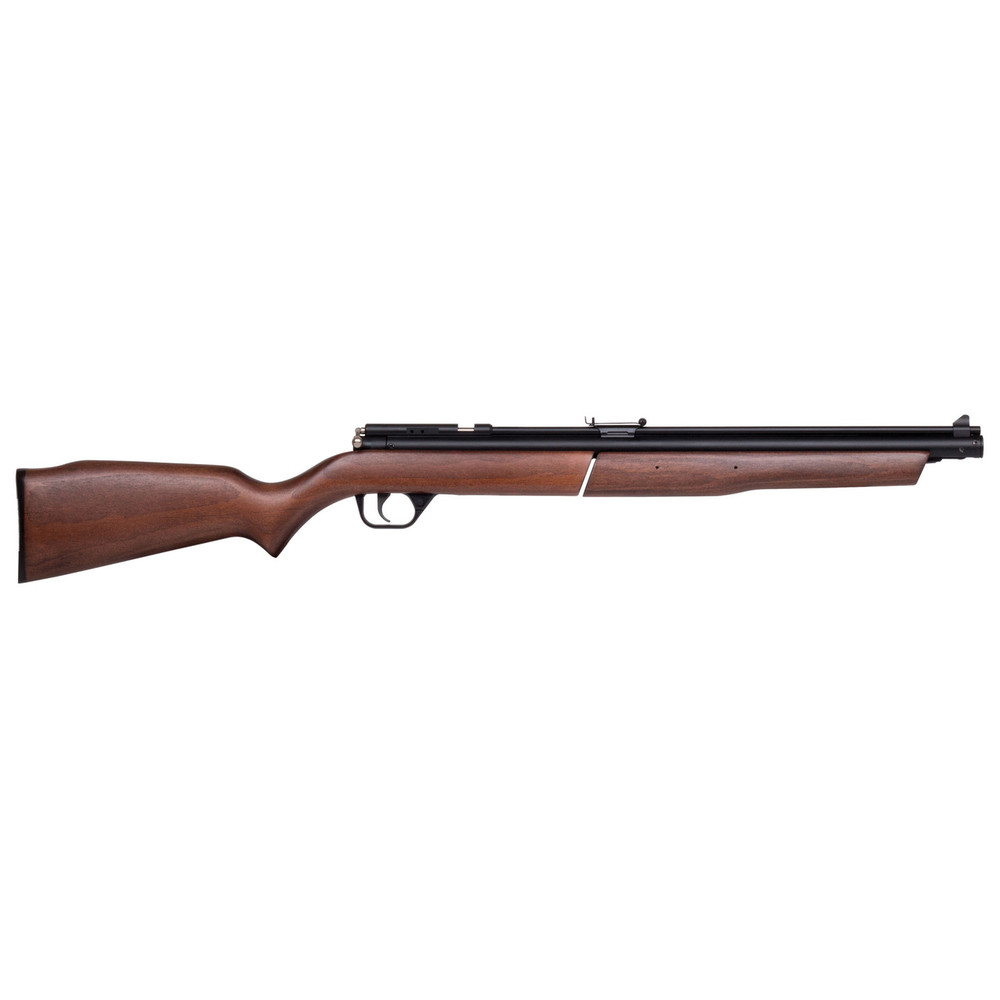 Benjamin .22 Pellet Rifle Pump Blk