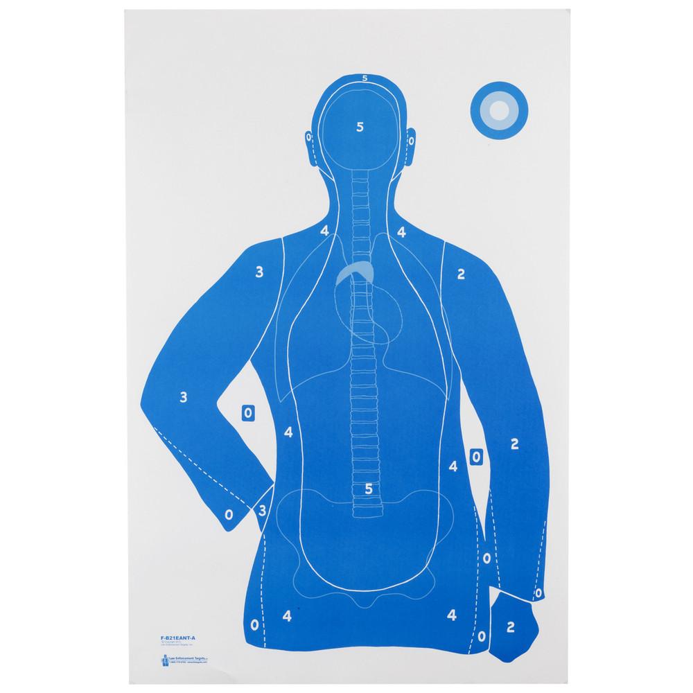Action Tgt B21e Anatomy Score 100pk