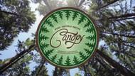 Canopy Essential Oils