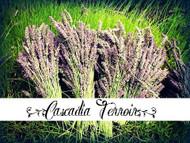 Cascadia Terroir