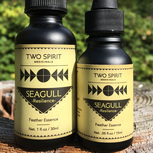 Seagull Feather Essence