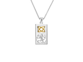 Sterling Silver + 10K Gold Lion Rampant Rectangle Small Pendant