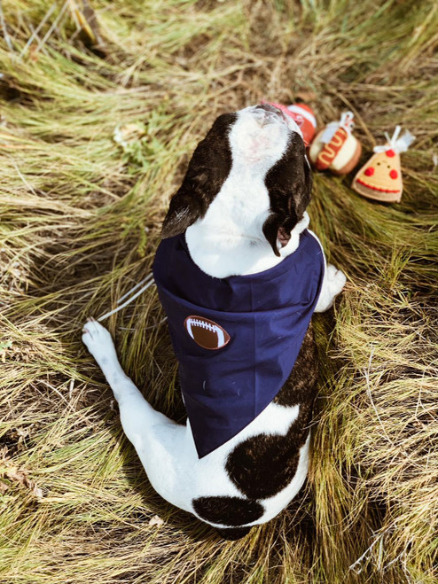Dog Bandana and Toy Set 'It's Time To Tailgate'