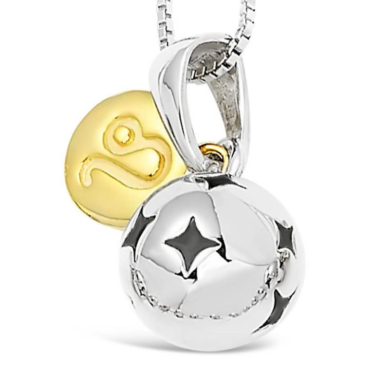 Zodiac silver pendant - Leo - Jul 23 - Aug 22