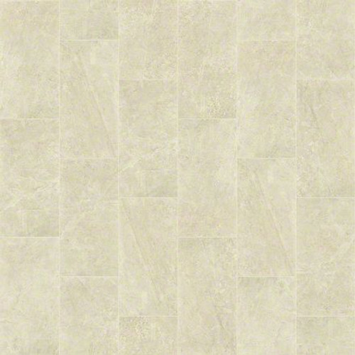 "Shaw Vision Allure 16"" x 32"" Polished Floor Tile"