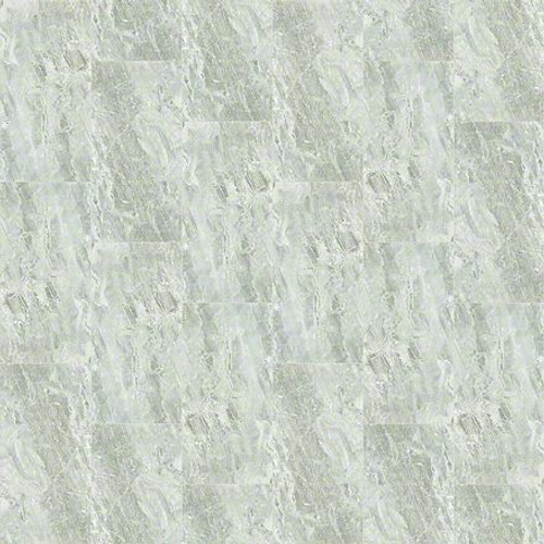 "Shaw Vision Argento 16"" x 32"" Polished Floor Tile"