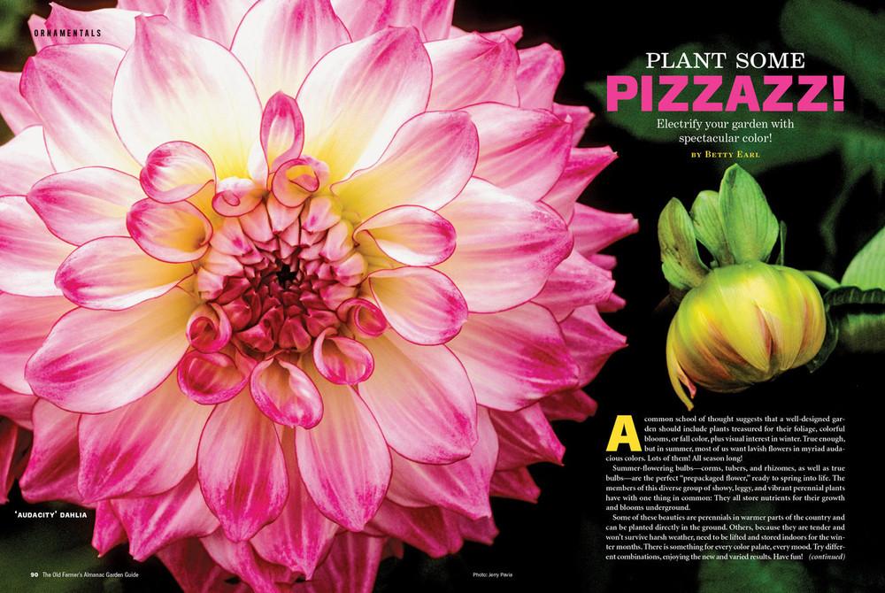 Old Farmer's Almanac Garden Guide, Volume 18 - Online Edition