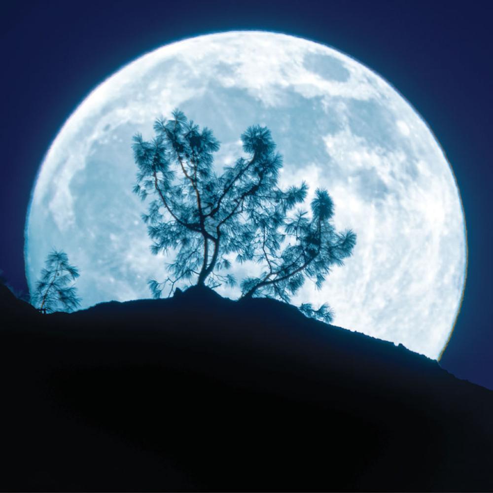 The 2020 Old Farmer's Almanac Moon Calendar