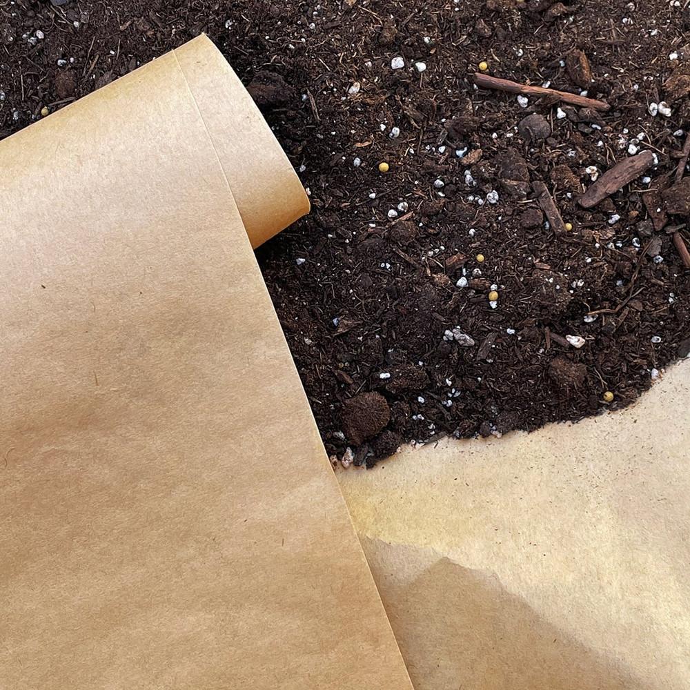 Paper under mulch