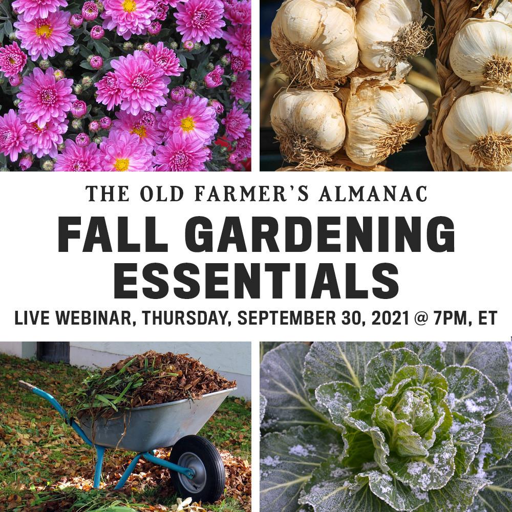 Fall Gardening Essentials Live Webinar