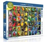 Rainbow of Birds Jigsaw Puzzle 1000 Piece