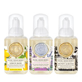 Mini Foaming Hand Soap Set #1