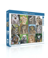 Owls and Owlets Jigsaw Puzzle 1000 Piece