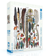 Feathers Jigsaw Puzzle 1000 Piece