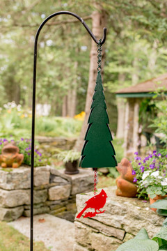 Pointed Fir of the North Wind Bell