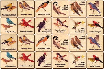 Backyard Birds Memory Tiles