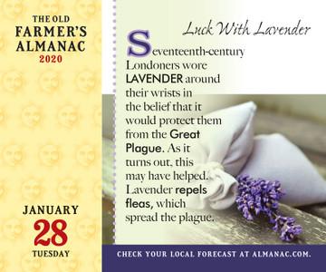 The 2020 Old Farmer's Almanac Everyday Calendar