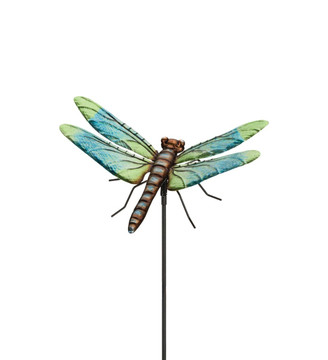 "36"" Dragonfly Stake:  Dasher"