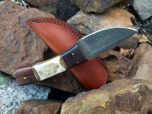 Wood and Ram Horn Damascus Knife