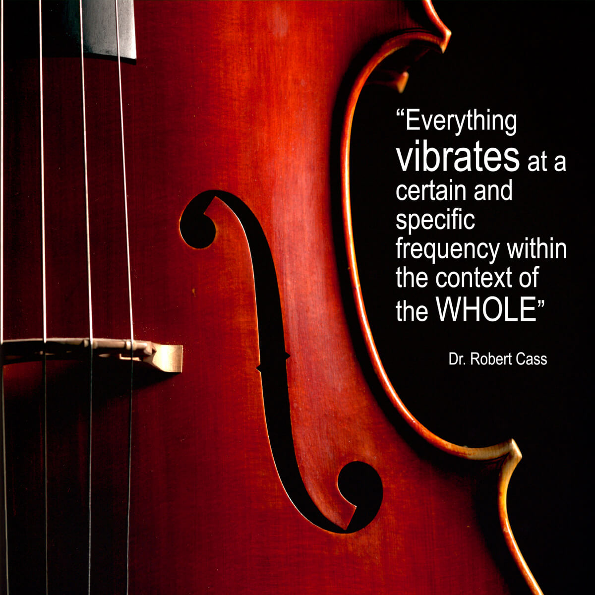 cello-wording-added-for-plaque.jpg