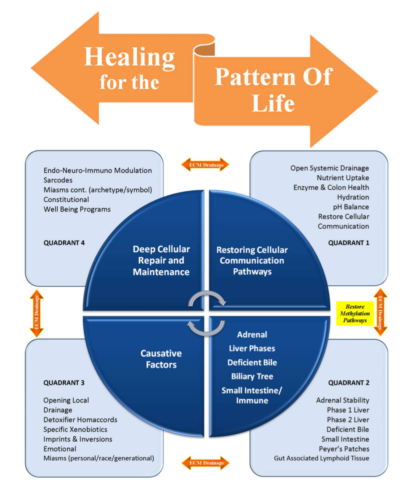 healing-for-the-pattern-of-life-infographicinfographics-r1.jpg
