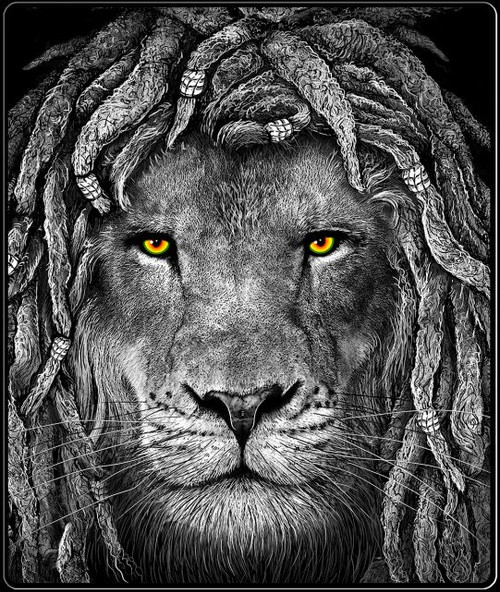 420 THROW RASTA LION EYES