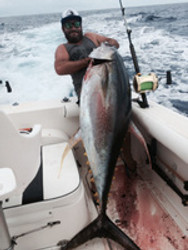 Thumper Yellowfin Tuna hit the Gold Coast - 75kg (165lb) taken on Baja USA 50/80 Stand Up rod