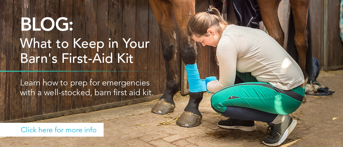 Blog: What to keep in your barn's first aid kit