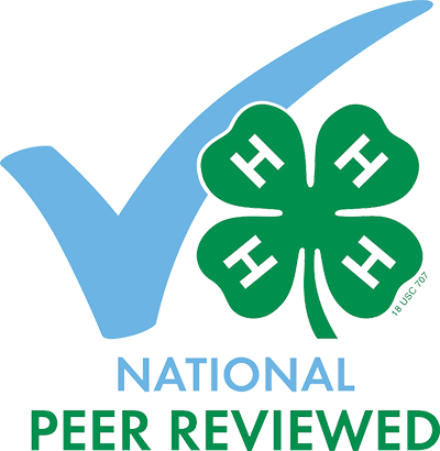 national-peer-review-l17.png