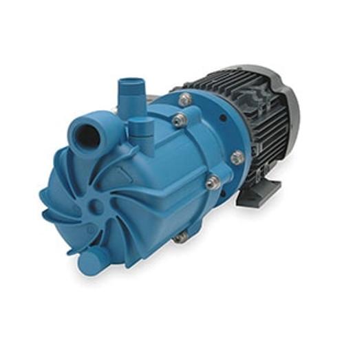 SP11P-M215 Finish Thompson 2 HP Polypropylene Magnetic Drive Pump
