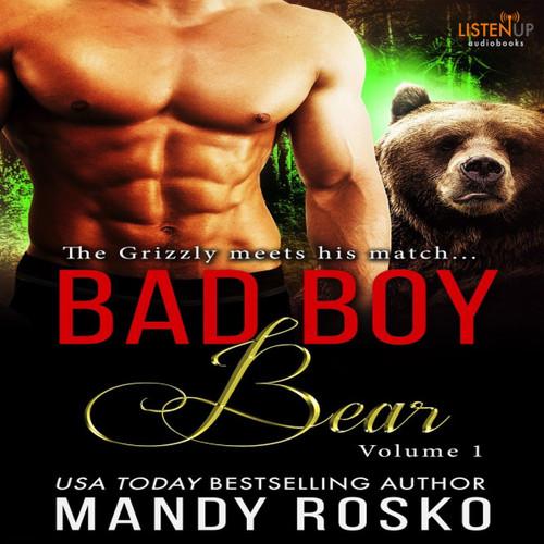 Bad Boy Bear, Vol 1