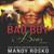 Bad Boy Bear, Vol 3