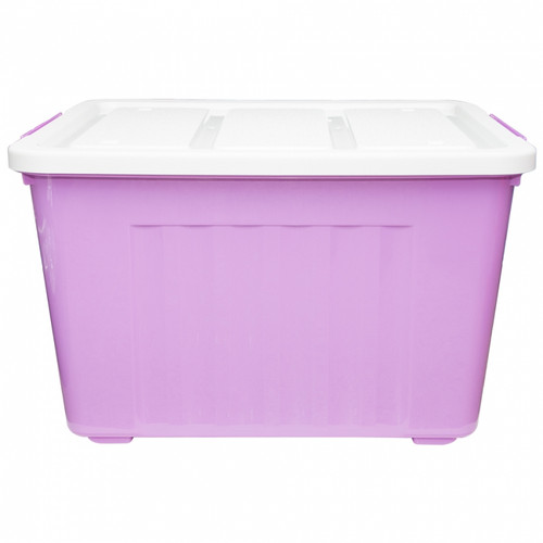 Judu Purple pvc Container 3017 (CON07)