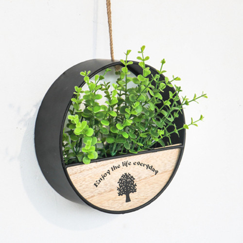 Round Shaped Wall Hanging Flowerpot W Plant