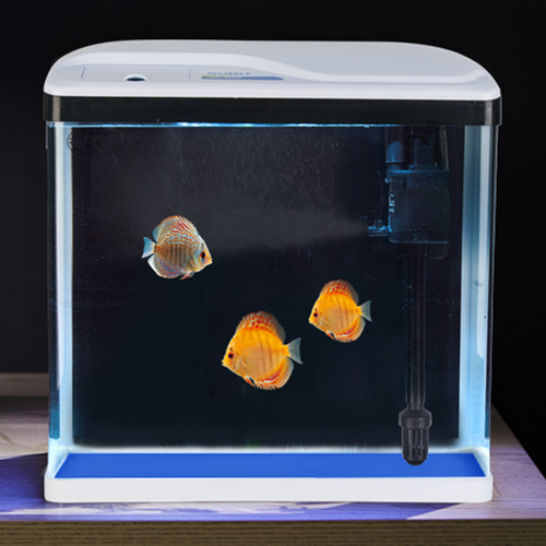 Square Aquarium 240X165X280mm