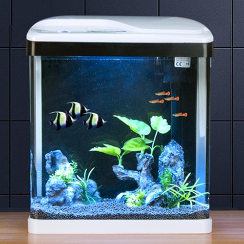 Square Aquarium Set T-420 240X165X280mm