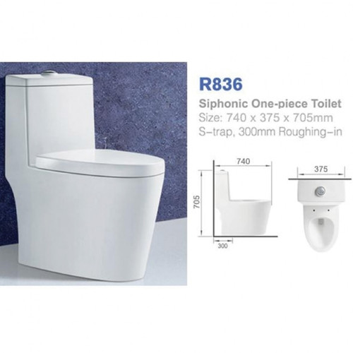 RICHFORD 1 piece toilet set S-Trap R836