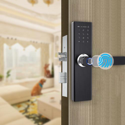 Penguin Safeguard Digital Lock X1