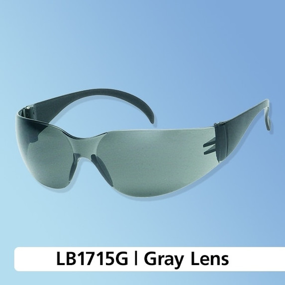iNOX Wrap-Around Safety Glasses, Multiple Lens Options