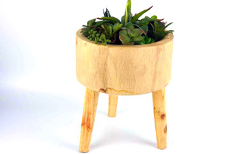 Direct Wicker Artificial Plants Succulents Wooden Base with legs