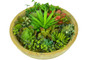 Direct Wicker Realistic Fake Plants Succulent Plant with Wooden Box