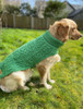 Aran Dog Coat - Green