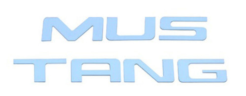 1999-2004 Ford Mustang Polished Stainless Steel Bumper Insert Letters