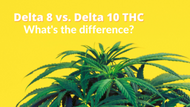 What is the Difference Between Delta 8 and Delta 10