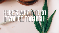 Here's What To Do If You're Feeling Too High