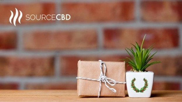 ​The Ultimate 2020 CBD Holiday Gift Guide