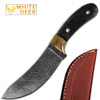 White Deer Exotic Damascus Knife Blank Skinner